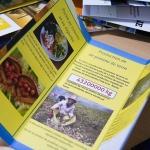 Brochures habitudes alimentaires-11