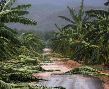 5ème (EPI) – Etude d'une catastrophe naturelle