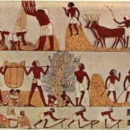 6ème SEGPA – ULIS – La société en Egypte ancienne