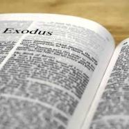 6ème SIA – Exodus