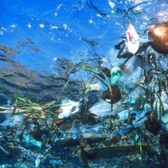 4ème SIA – Rethink Plastic. Save Our Seas
