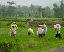 Geo . S2 . Habiter le monde rural